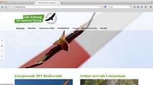 naturwende_DeWiSt_Sommerhage_Titelfoto_Rotmilan_Windenergie_Windkraft