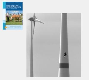 """Foto """"Rotmilan und Windenergie"""" in """"Naturschutz und Landschaftsplanung, August 2013"""""""