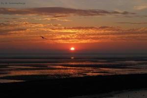 Sonnenaufgang_MOog